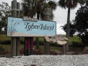 Tybee Island sea turtle nesting season