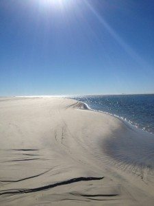 Little Tybee photo by Carol Martin