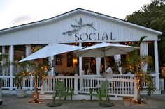 The Social-Pet-Friendly Places on Tybee Island