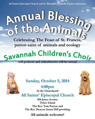 tybee island's animal blessing