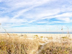 revisiting an old love in tybee island