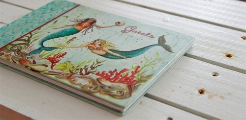 a diary of mermaids