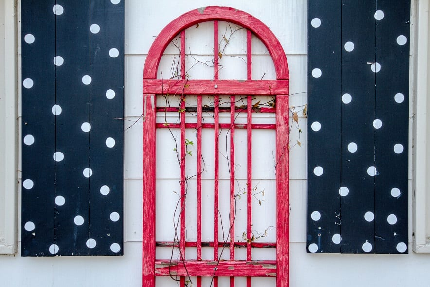 how cute are these polka dotted shutters