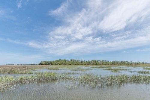 tybee island marshes