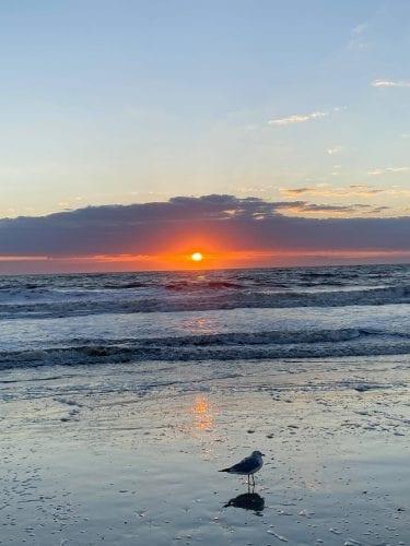 the midwest mermaid tybee island sunset