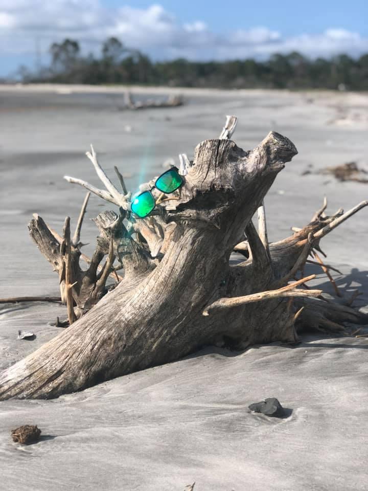 tybee driftwood melissa saltzer