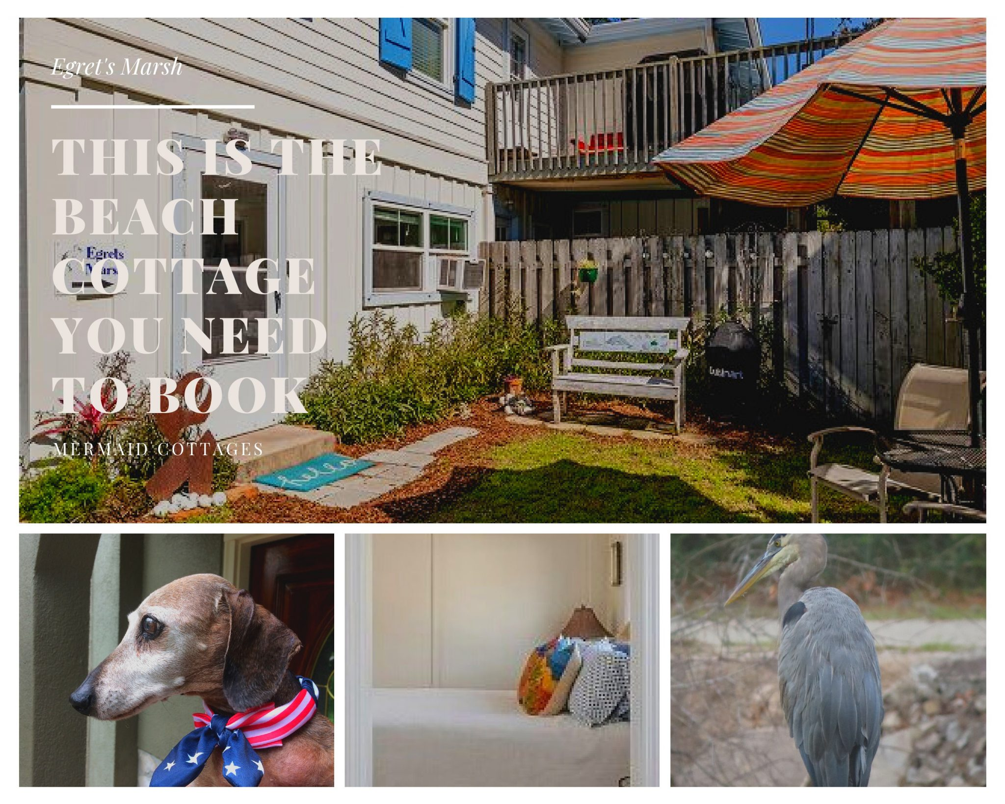 pack your wags for Mermaid Cottages and Tybee Island