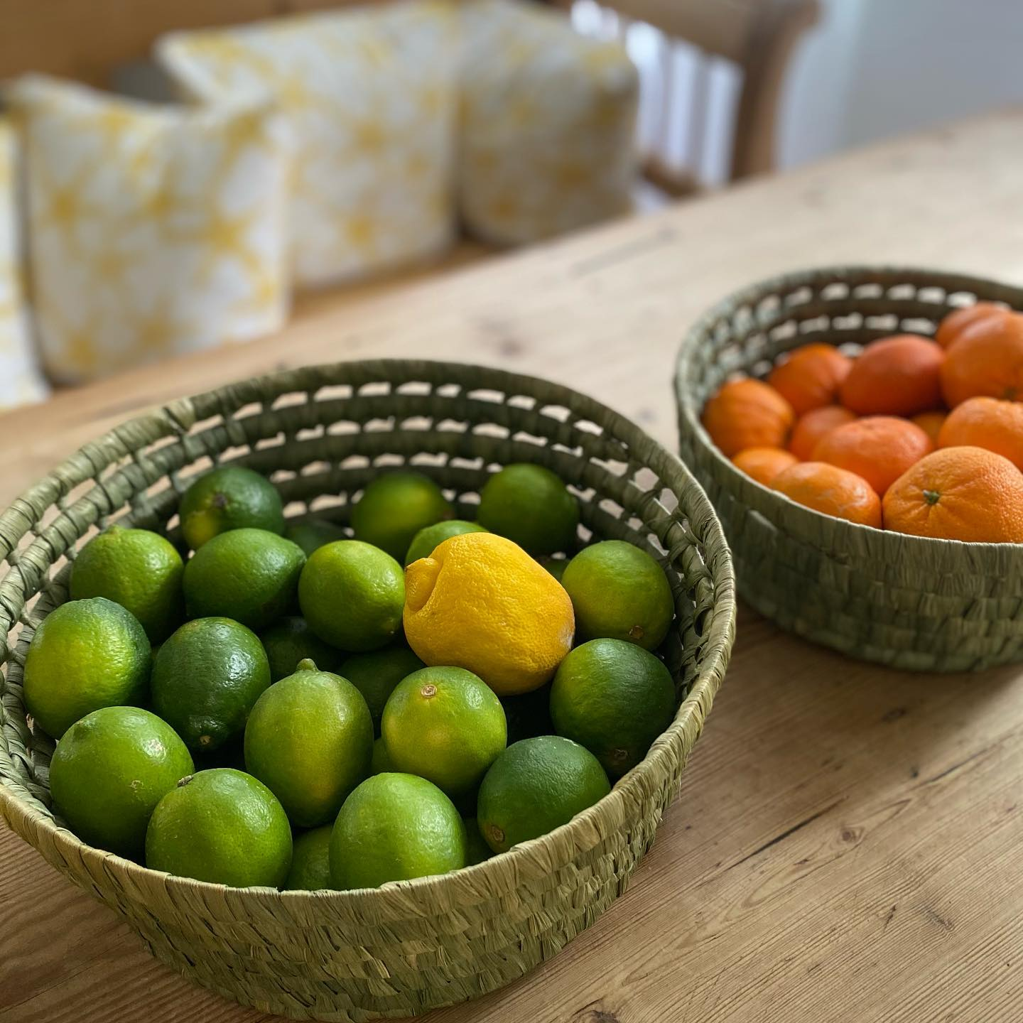 Mermaid Cottages invites you to experience the fruits of our labor